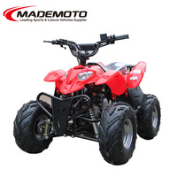 110cc automatic cluth/ with reverse optional,have strong bility manual brake quad bike EEC/CE approvedATV