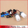 New arrival! Factory supplier fast bright HID Fast bright xenon bulbs, H1 H7 H11 D2H 9005 9006