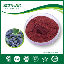 The factory Supply Bilberry Extract