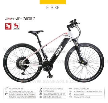 2016 alloy the electric mountian bike