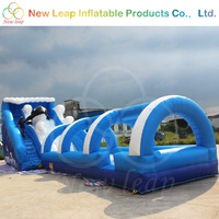 Giant inflatable water slide With Tunnel Inflatable Splash Slip