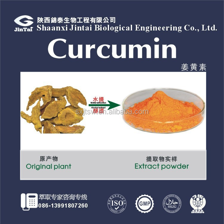 Natural Organic Turmeric Root Extract HPLC 95% Curcumin Powder