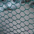 Hexagonal Wire Mesh Fence