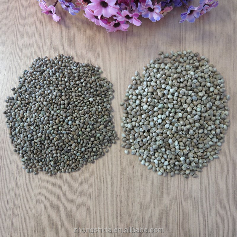 Huo ma ren zhong zi with Certified Organic Chinese Hemp Seeds
