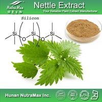 100% Natural Nettle Seed Extract/Nettle Seed Extract Powder/Nettle Seed P.E.