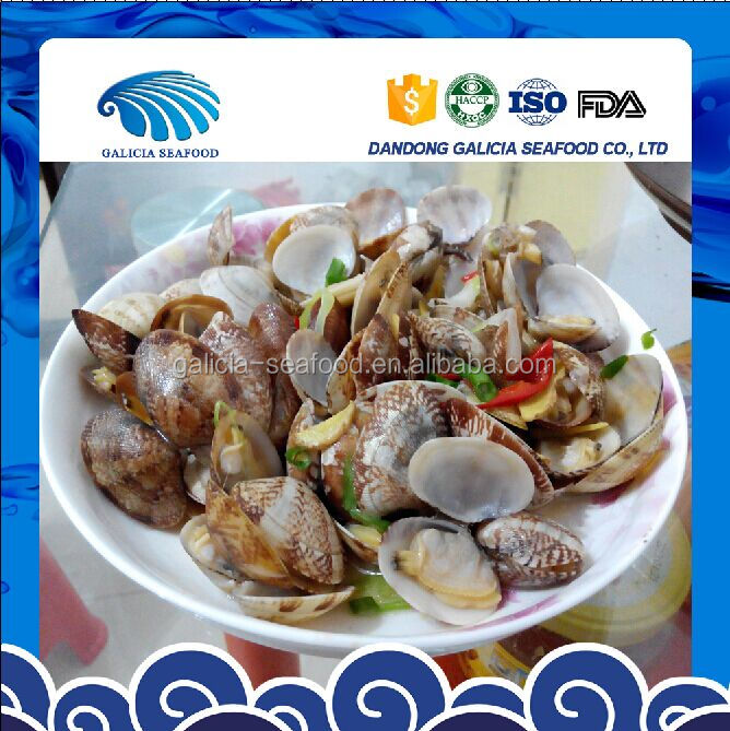 Frozen Boiled Clam Whole Year Round Supplying