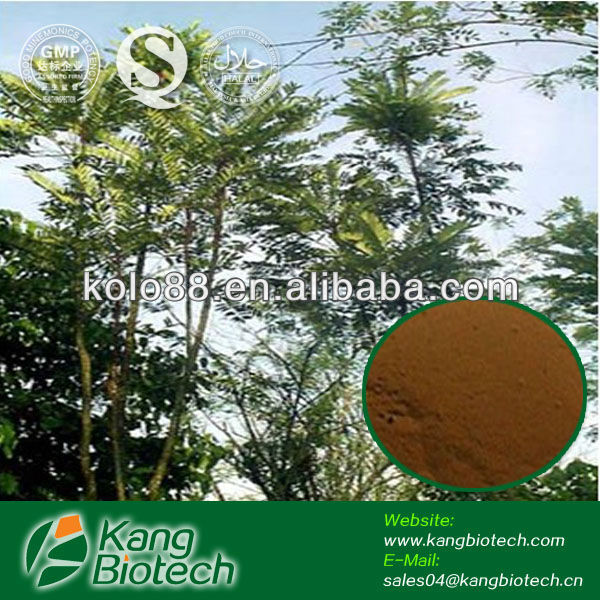 tongkat ali powder extract , sexual herbal chinese medicine