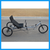 Adult Delta Recumbent Bike