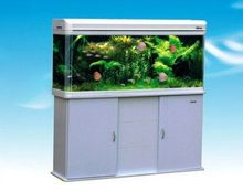 1000*500*1600 indoor decorative aquarium