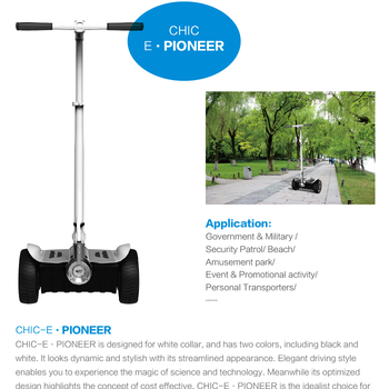 IO CHIC Hot selling 9 inch electric scooter lightweight 1000w