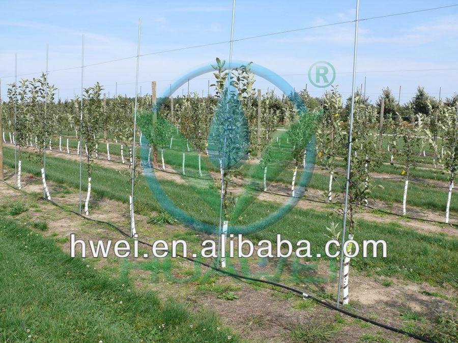 Sistema di irrigazione per azienda impianto di irrigazione for Irrigazione per aspersione