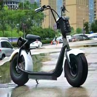 pleasedin citycoco elecric motor bicycle 18inch off road electric scooter