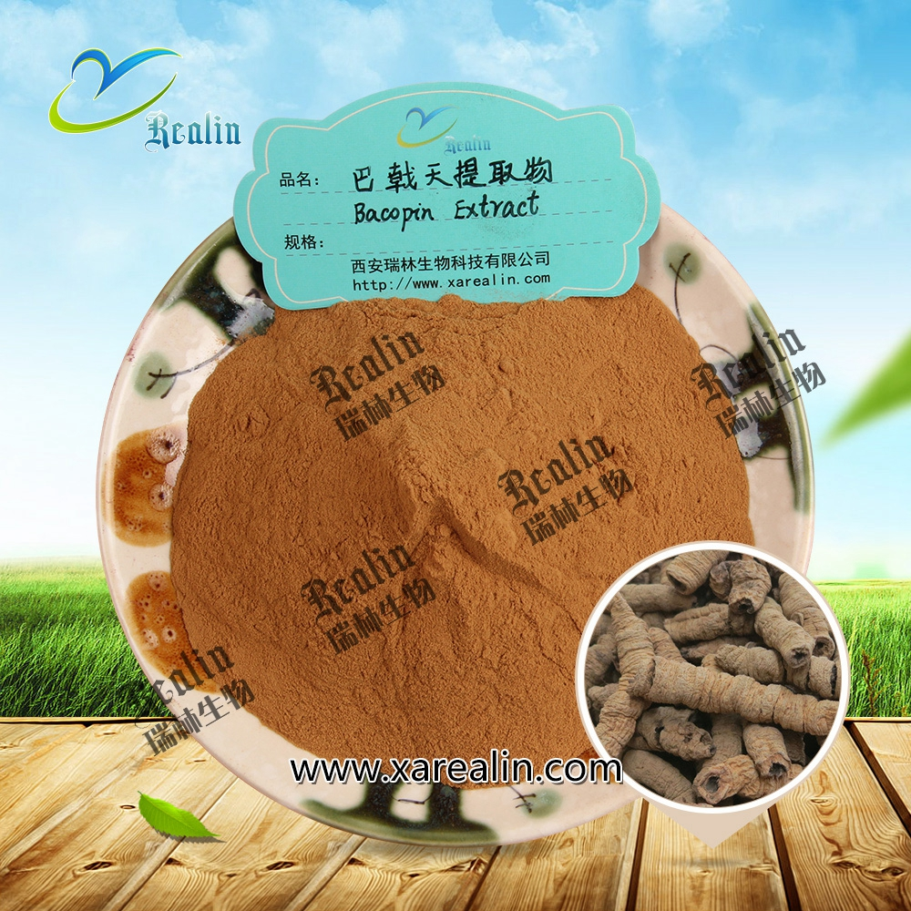 Herbal Aphrodisiacs Premature Ejaculation Treatment Sperm Time Delay Capsule Material Bacopin Extract