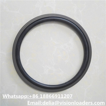34C0033 Seal Ring for Liuzhou CLG856 Wheel loader Spare Parts for sale