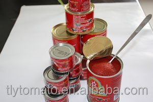 210g double concentrated tomato paste,ketchup,sauce