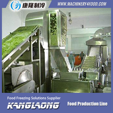 500Kg/H fruit drying production line