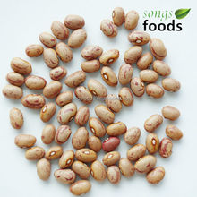Dried Round Shape Light Speckled Beans, Huanan Origin