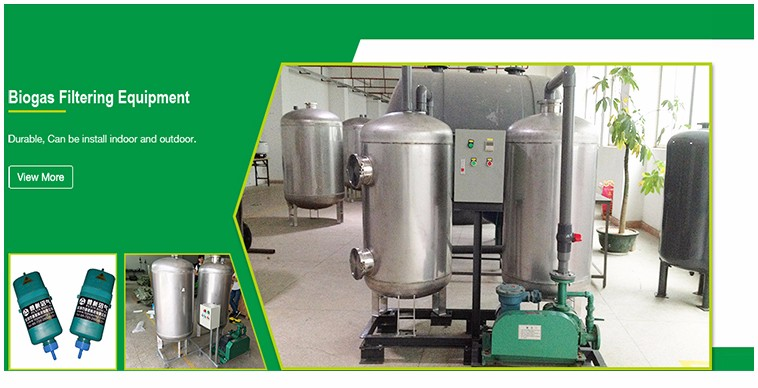 Chinese Biogas Technology Biomass Biogas Assembly