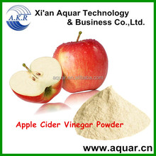 Fatory Price Organic Apple Cider Vinegar Powder For Weight Loss/Apple Polyphenols 20% 50%