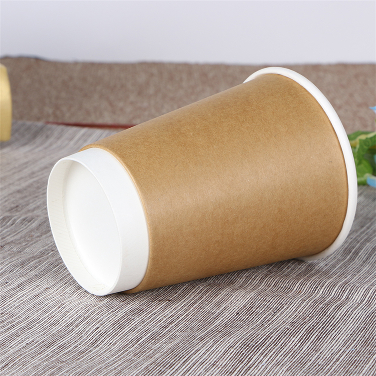 Disposable brown double wall insulated cup