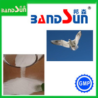 sodium butyrate weight gain injection vitamin c health care product veterinary medicine pigeon medicines