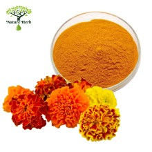 High Quality Food Pigment Marigold Flower Extract eye protecting Lutein Esters