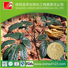 panax ginseng extract powder supplier