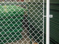 high quality galvanized chain link fence(anping factory)