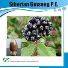 high quality siberian ginseng p.e. Ginseng Root Extract fine powder