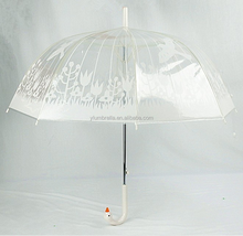 Promotional custom logo duck head umbrella/China fashion transparent PVC umbrella