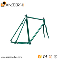 CE Approved 700C 4130 Chromoly Fixed Gear Bike Frame ASB - FR- C02