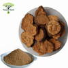 Manufacturer Offer High Quality Fo-ti Root Extract/Fleeceflower Root Extract