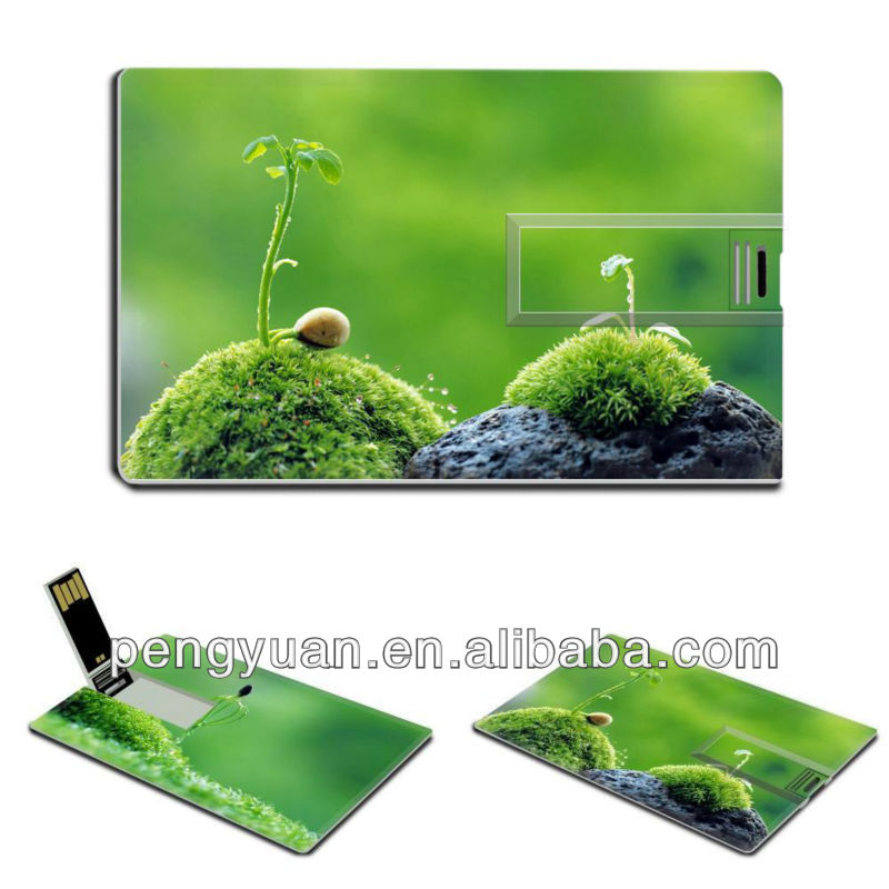Promotional gift newest business credit card 4gb usb flash thumb drive,flower business 16gb credit card 8gb usb flash drive