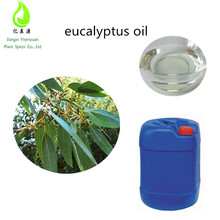High 99.9 % Eucalyptol Content Eucalyptus Oil Bulk Eucalyptus Oil Used For Medicinal Or Perfumery And Industrial Purposes