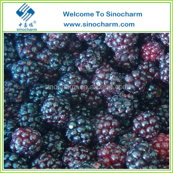 Supply Good Quality Chinese IQF Blackberry