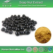 Free Sample Sapindus Trifoliatus Shell Extract Furostanolic Saponins 90% Saponins