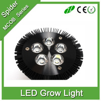 PAR38 E27 12W 15W 18W led grow lights /plant light bulb for mini plant growing