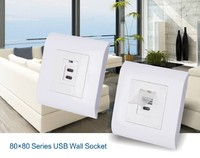 wholesale 16a 230v russian wall plug socket with usb port