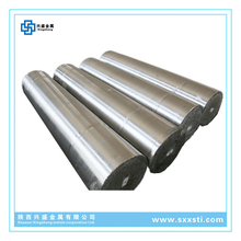 Factory offer titanium Gr5 ingot ti6al4v