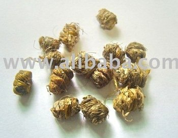 Dendrobium spp. orchids extract