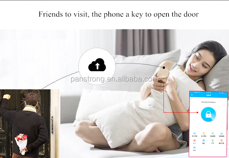 Professional Door Handle Door Lock With Wifi