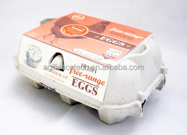recycled paper pulp egg tray/ carton/box