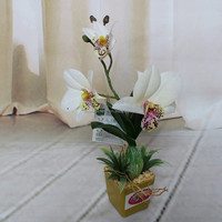 Artificial orchid mini bonsai for decoration