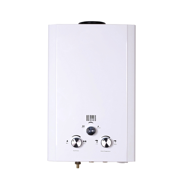 2017 hot sale wholesale instant gas water heater 8L price for home using