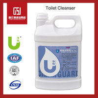 Liquid Antibaterial WC Toilet Bowl Cleaner