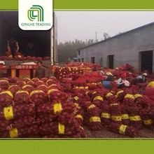 cheap best sale onion holland onions yellow with high quality