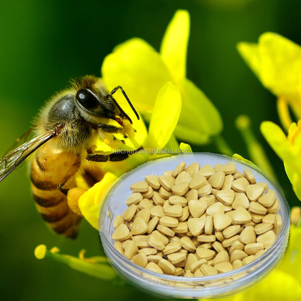 nutraceutical origanic rape bee pollen tablet with 22% high protein for prostatitis treatment and prevention