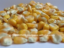 field corn seed prices