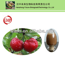 2014 best selling natural acerola cherry extract powder wih high quality