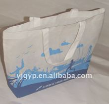 2012 HOT newest design Eco-friendly beautiful 100gsm non woven shopping Bag